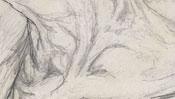 Albrecht Durer mother as giraffe (Detail 3)