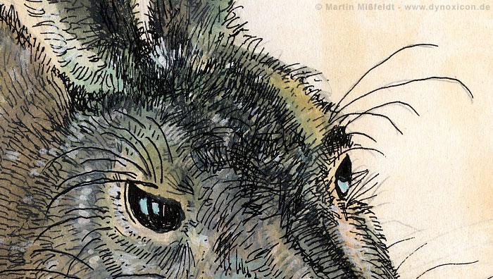 Young Hare after Albrecht Dürer (Detail 1)