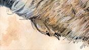 Young Hare after Albrecht Dürer (Detail 3)
