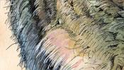 Young Hare after Albrecht Dürer (Detail 4)