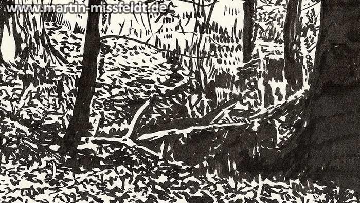 Forest near Chorin, brush pen drawing (Detail 1)