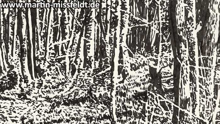 Forrest near Chorin II (ink drawing) (Detail 1)