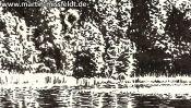 Lake Gamen near Deeplake (ink drawing) (Detail 2)