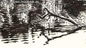 Lake Gamen near Deeplake (ink drawing) (Detail 4)