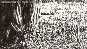 Lobetal in Brandenburg, landscape drawing (Detail 2)
