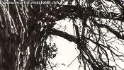 Lobetal in Brandenburg, landscape drawing (Detail 4)