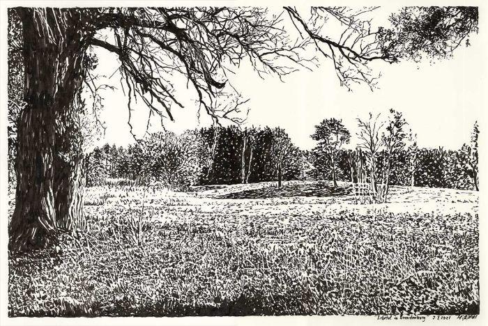 Lobetal in Brandenburg, landscape drawing