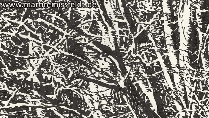Lobetal forest edge (drawing) (Detail 1)