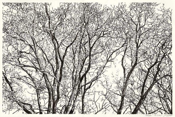Lobetal trees (brush pen drawing)