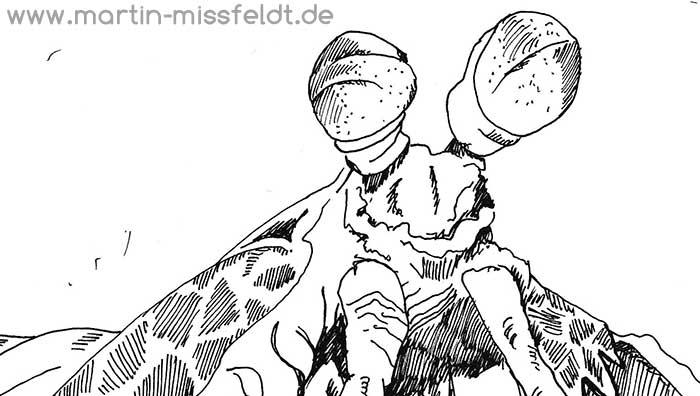 Drawing Mantis Shrimp (Detail 1)