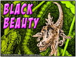 : Black Beauty