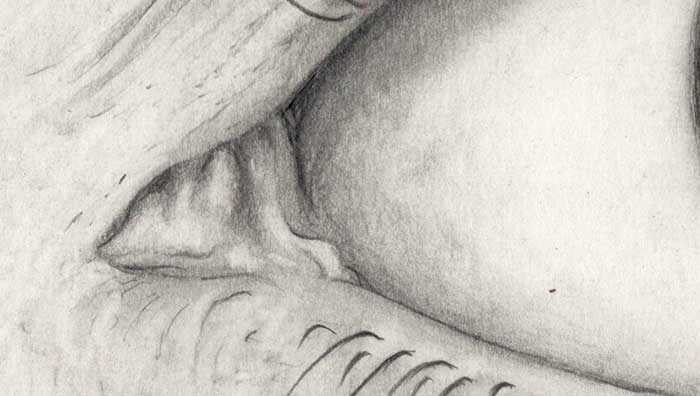 Drawing of an eye (2) (Detail 1)