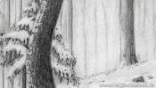 Drawing winter landscape forest (Detail 3)