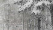 Drawing winter landscape forest (Detail 4)