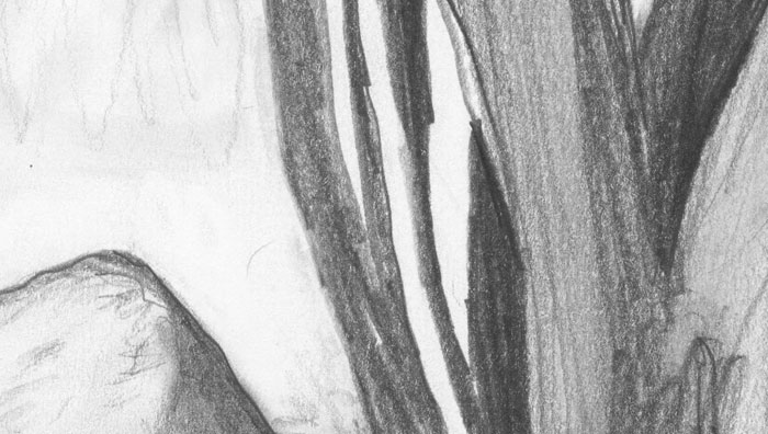 Hill grave pencil drawing detail 3 pencil drawing