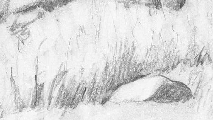 Pencil drawing of a landscape with megalithic grave detail 4 pencil on