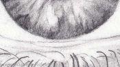 Pencil Drawing Realistic Eye (Detail 5)