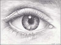 Pencil Drawing Realistic Eye