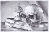 Vanitas Still Life (pencil drawing)