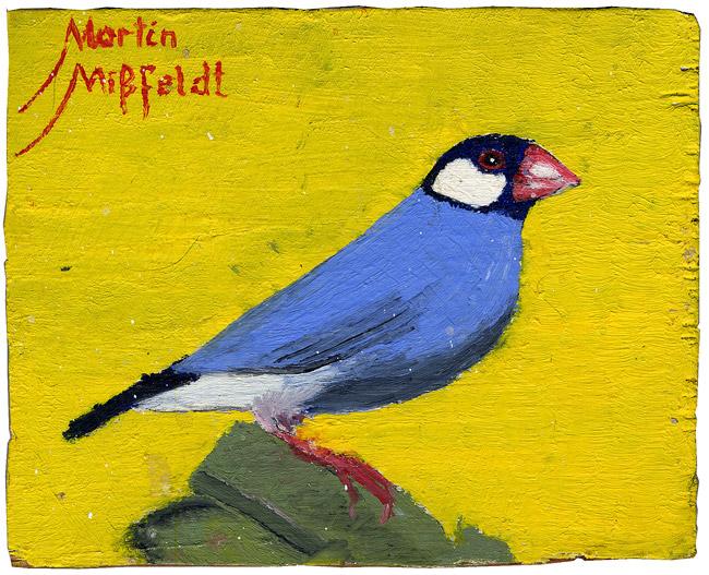 Bird (any finch)