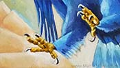 The falling Eagle (Oil painting) (Detail 4)