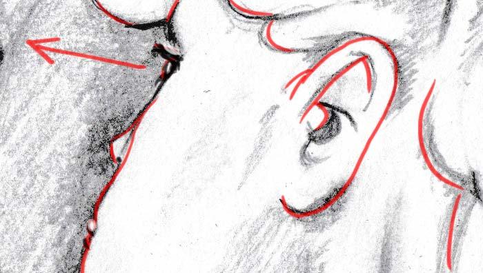 - Detail 1