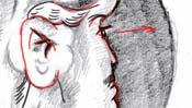 - Detail 2