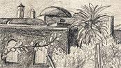 Campo Agosto, island Capri (Detail 1)