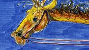 The horse of the Marlboro giraffe