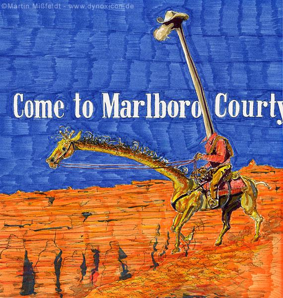 Come to Marlboro Courty Giraffe