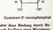 guanosine-5-monophosphate