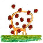 : Headless giraffe