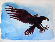 : Eaglecrow