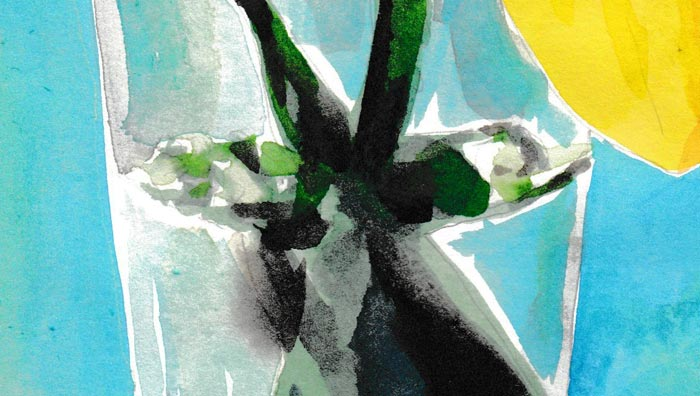 Flowers: narcissus (Watercolor) (Detail 1)