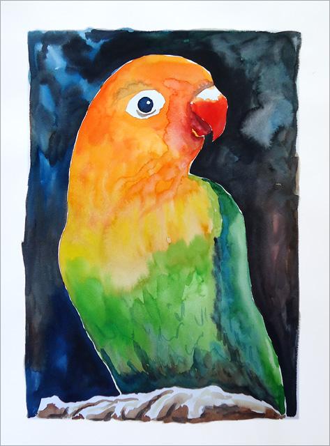 Watercolor Parrot